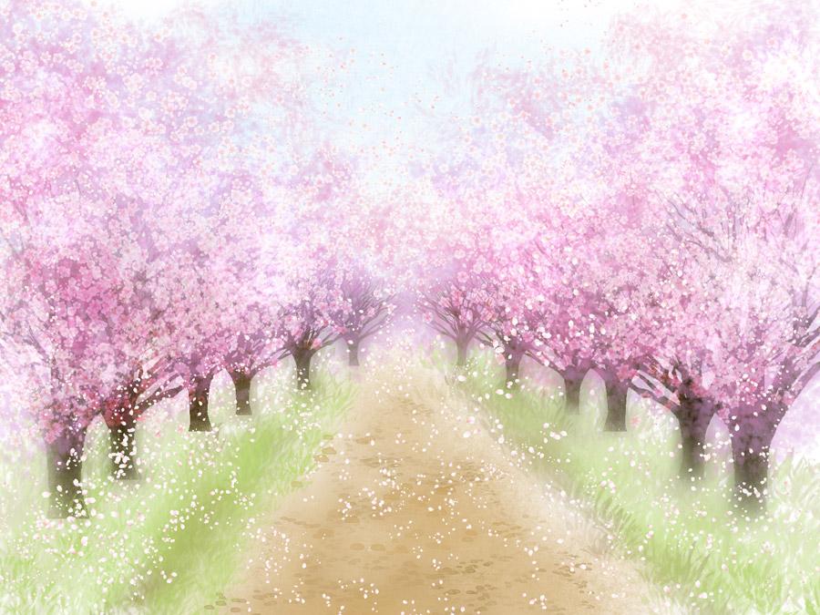 風景(イラスト), 樹木, 桜(サクラ), 並木道, 春(イラスト), 花(イラスト)